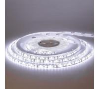 Лента светодиодная белая 12V MOTOKO smd2835 120LED/m IP20, 1м