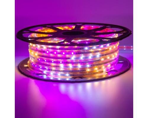 Лента светодиодная Multi-Color 220V smd2835 48LED/m 6W/m IP65, 1м