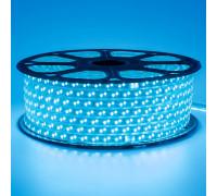 Лента светодиодная синяя 220V smd2835 120LED/m 12W/m IP65, 1м
